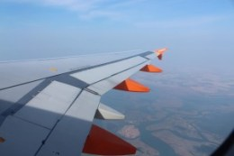 7. wing view